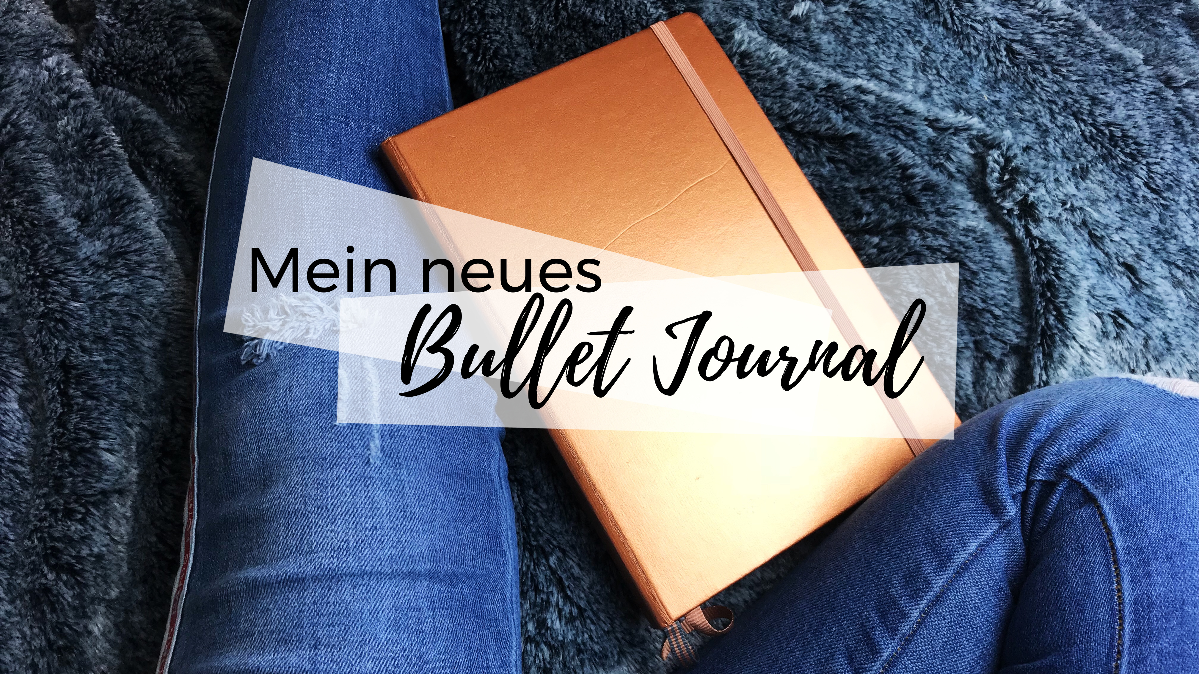Mein Neues Bullet Journal Kateastrophy